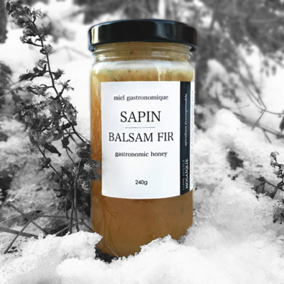 Miel sapin - balsam fir honey