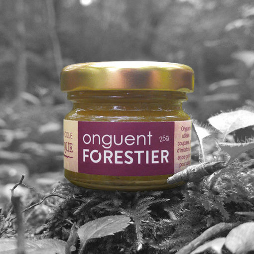 Onguent Forestier - Forest Ointment